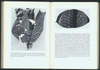 http://www.huberhuber.com/files/gimgs/th-201_201_das-wunder-der-pflanzeseiten-4-hp_v2.jpg