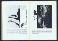 http://www.huberhuber.com/files/gimgs/th-201_201_das-wunder-der-pflanzeseiten-6-hp.jpg