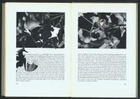 http://www.huberhuber.com/files/gimgs/th-201_201_das-wunder-der-pflanzeseiten-7-hp.jpg