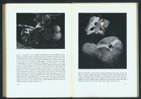 http://www.huberhuber.com/files/gimgs/th-201_201_das-wunder-der-pflanzeseiten-8-hp.jpg