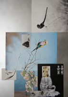 http://www.huberhuber.com/files/gimgs/th-225_225_nature-morte2013naturehuberhuberkaefer-.jpg