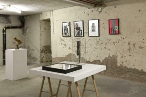 http://www.huberhuber.com/files/gimgs/th-231_231_144ausstellungsansicht-ich-tier-du-mensch10.jpg