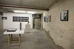 http://www.huberhuber.com/files/gimgs/th-231_231_144ausstellungsansicht-ich-tier-du-mensch3.jpg