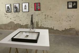 http://www.huberhuber.com/files/gimgs/th-231_231_144ausstellungsansicht-ich-tier-du-mensch6.jpg