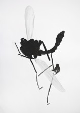 http://www.huberhuber.com/files/gimgs/th-29_29_lebensraum-ateliermuecke-v-.jpg